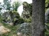 Das Naturdenkmal Berger Wacken bei Berglicht