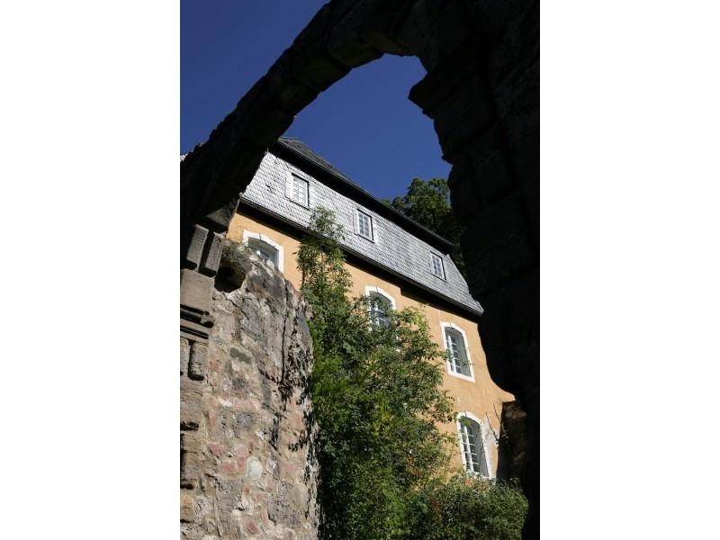 Die Burg Dhronecken