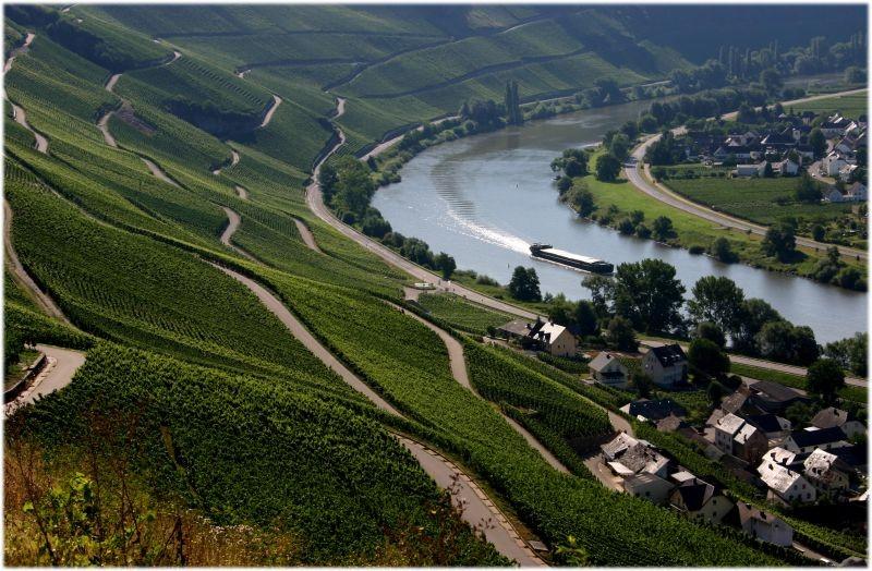 Die Weinkulturlandschaft Mosel