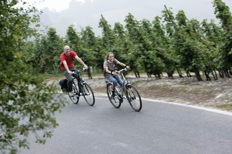 Radwandern an der Mosel